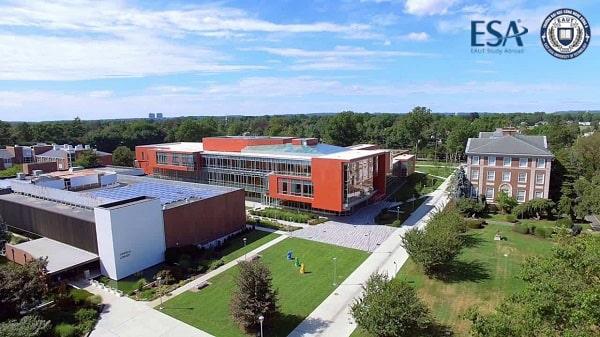 Cảnh quan trong trường Adelphi University