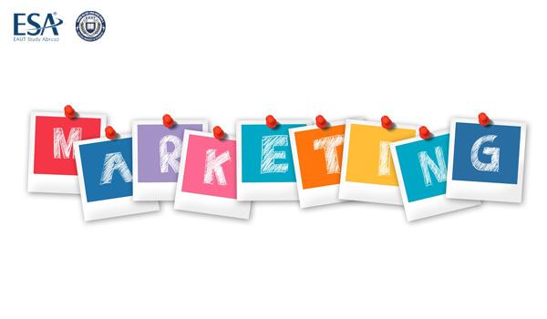 Ngành marketing có dễ xin việc không?