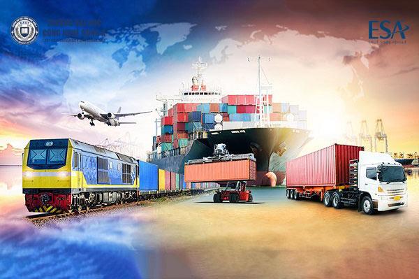 Công việc ngành Logistics như thế nào, khó không?