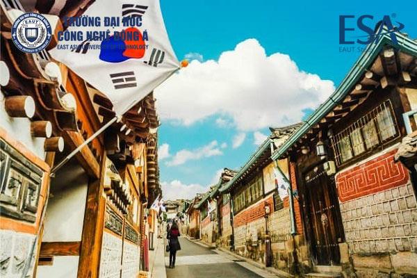 Ngành ngôn ngữ Hàn Quốc cơ hội việc làm cao