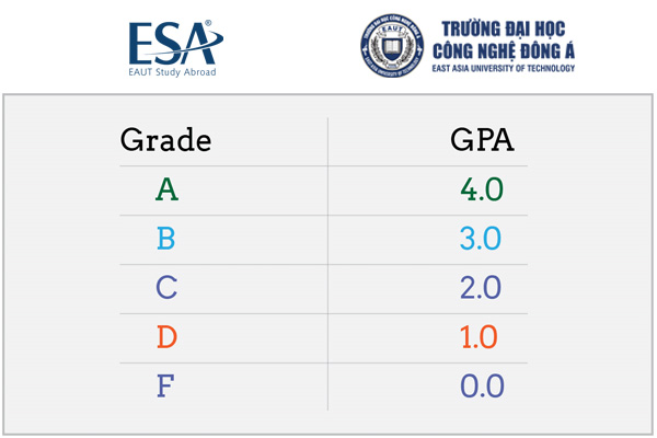 Đổi điểm chữ sang GPA thang điểm 4 như thế nào?